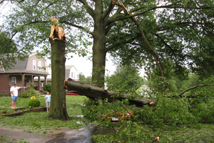 Summer Storm Damage